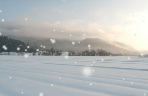 snow3d_catch