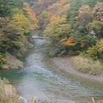 紅葉(針畑川)