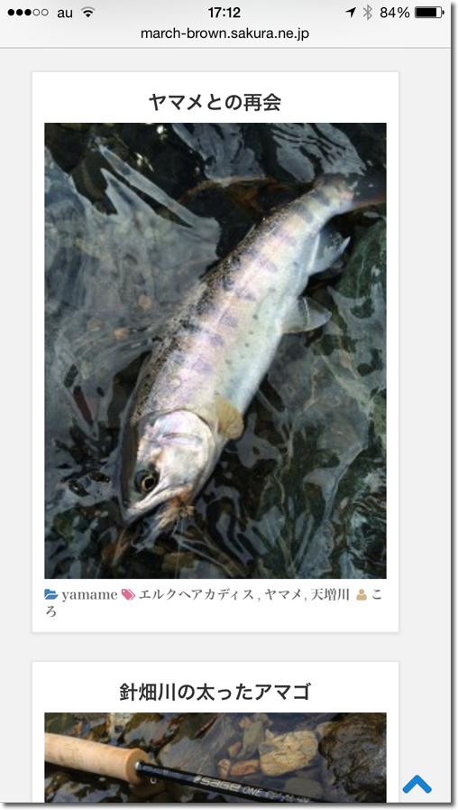 39_iPhone縦1