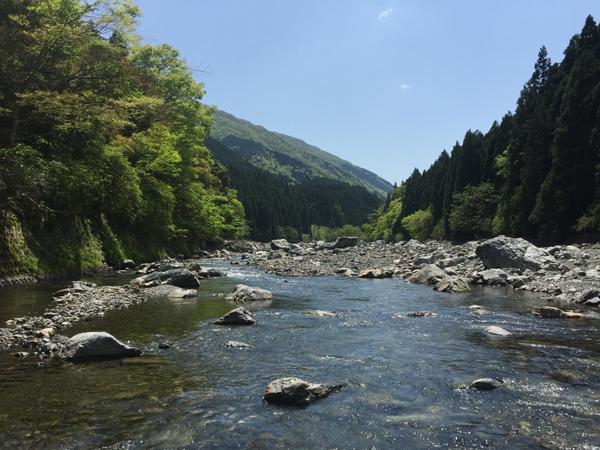 04_新緑の細川を釣る