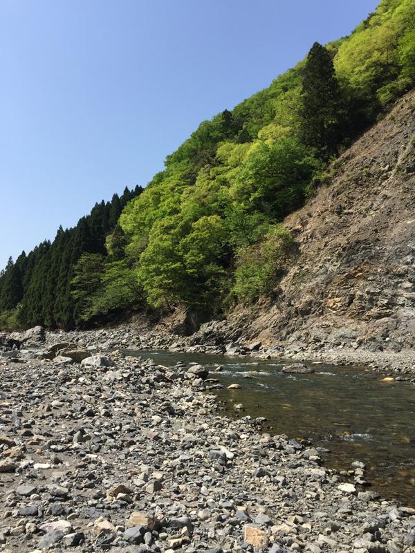 03_新緑の細川を釣る